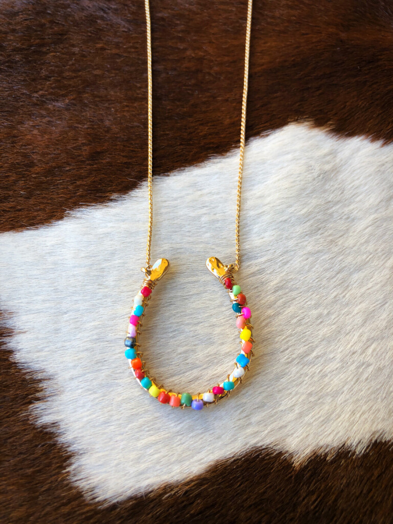 """ Color Fun Horseshoe "" Fashion Necklace ( Multi )"